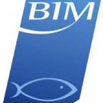 bim logo tall